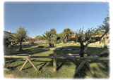 Tour Virtual | Camping & Bungalow Las Cañadas